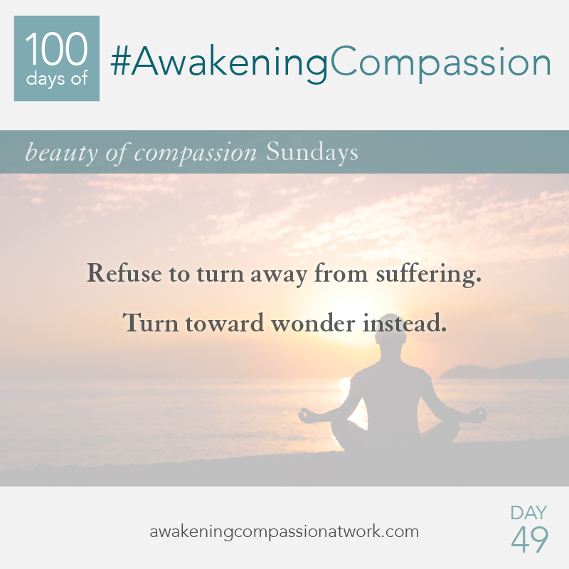 Refuse to turn away from suffering. Turn toward wonder instead.