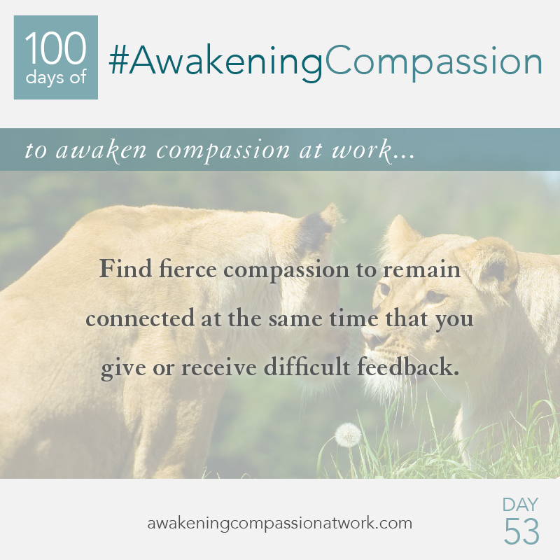#AwakeningCompassion Day 53