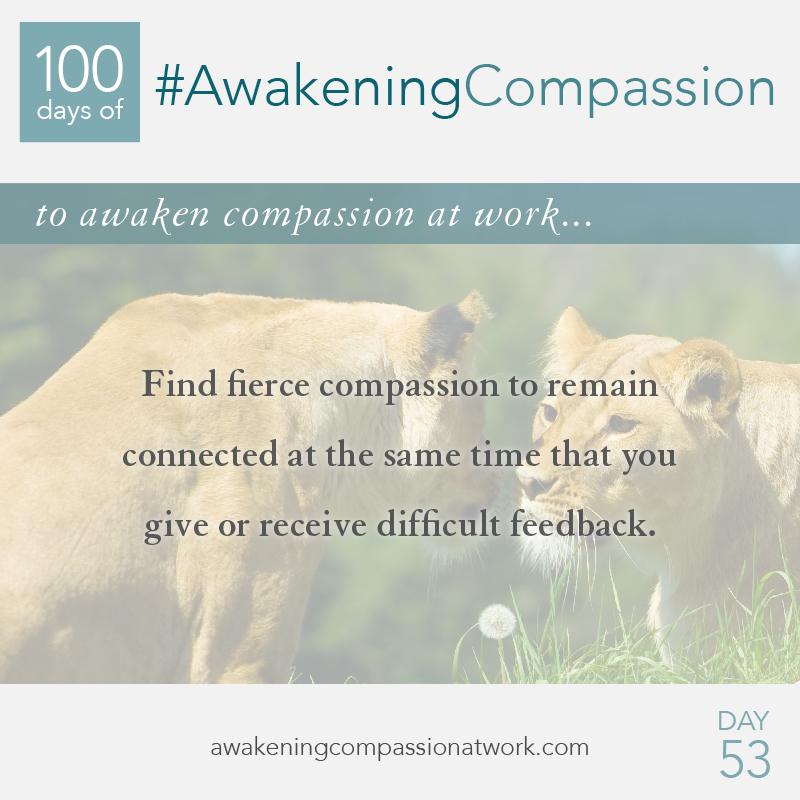 #AwakeningCompassion Day 53