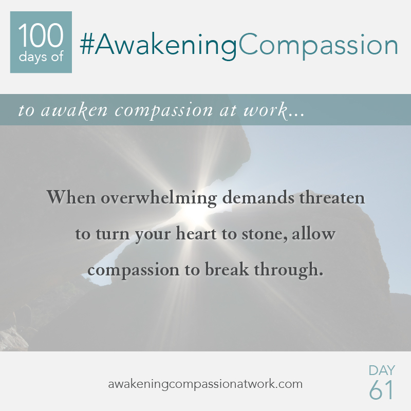#AwakeningCompassion Day 61