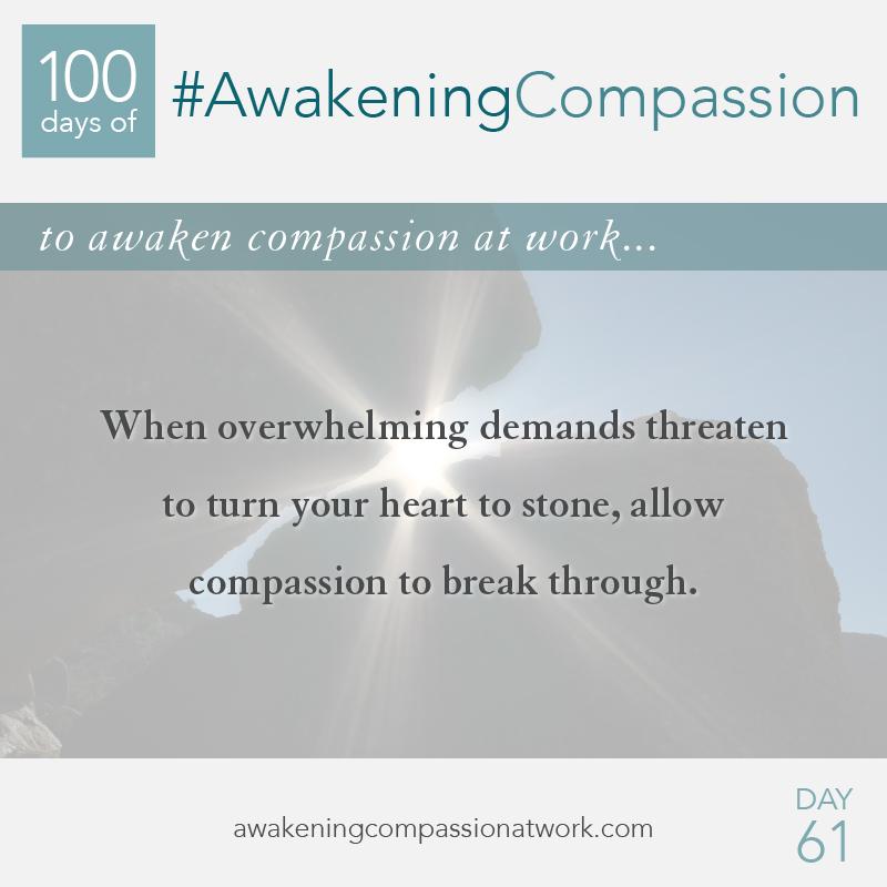#AwakeningCompassion Day 61