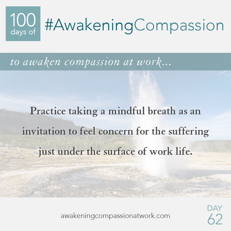 #AwakeningCompassion Day 62