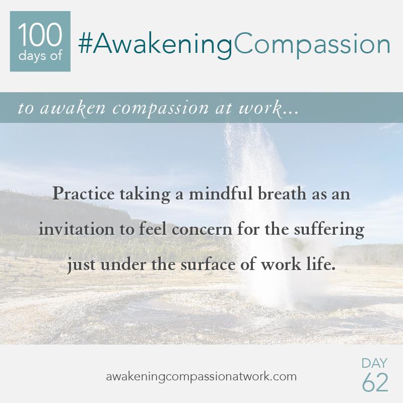 #AwakeningCompassion Day 62