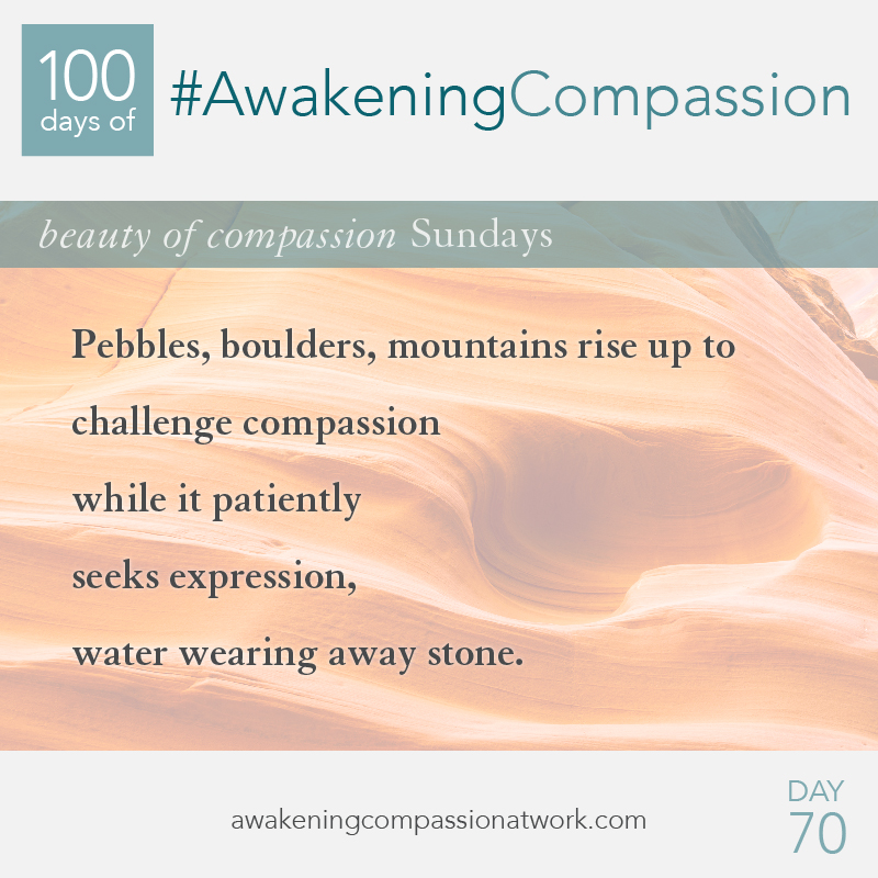 #AwakeningCompassion Day 70