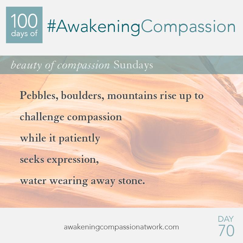 #AwakeningCompassion Day 70