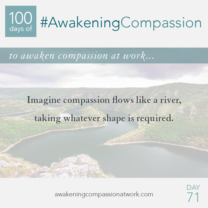 #AwakeningCompassion Day 71