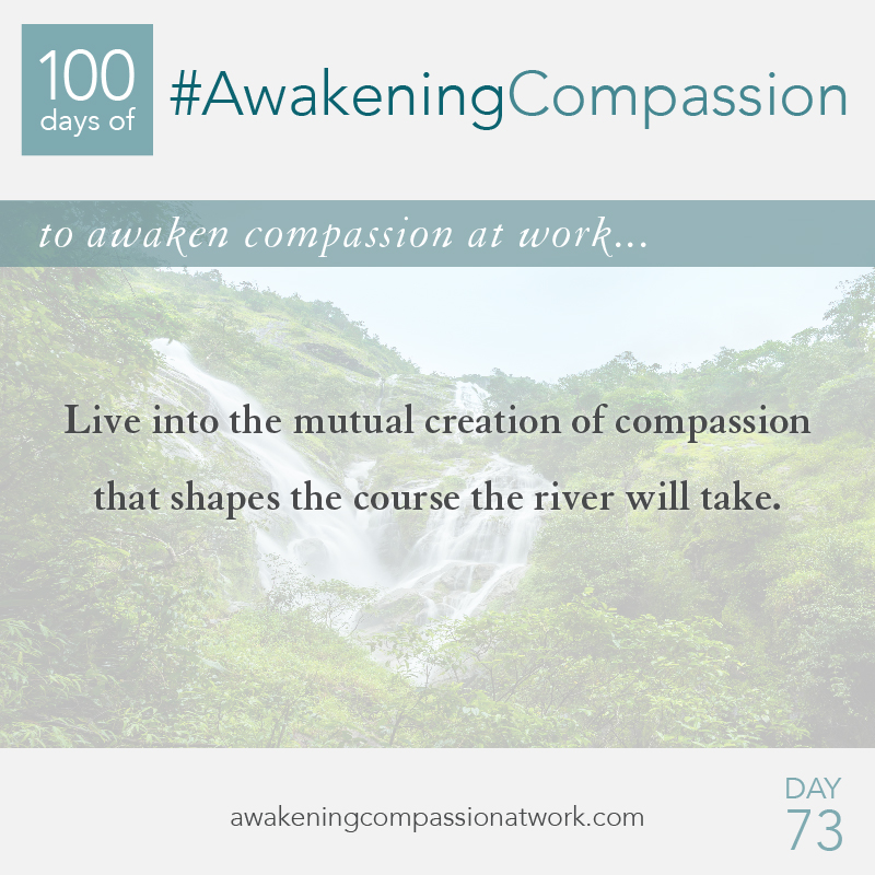 #AwakeningCompassion Day 73
