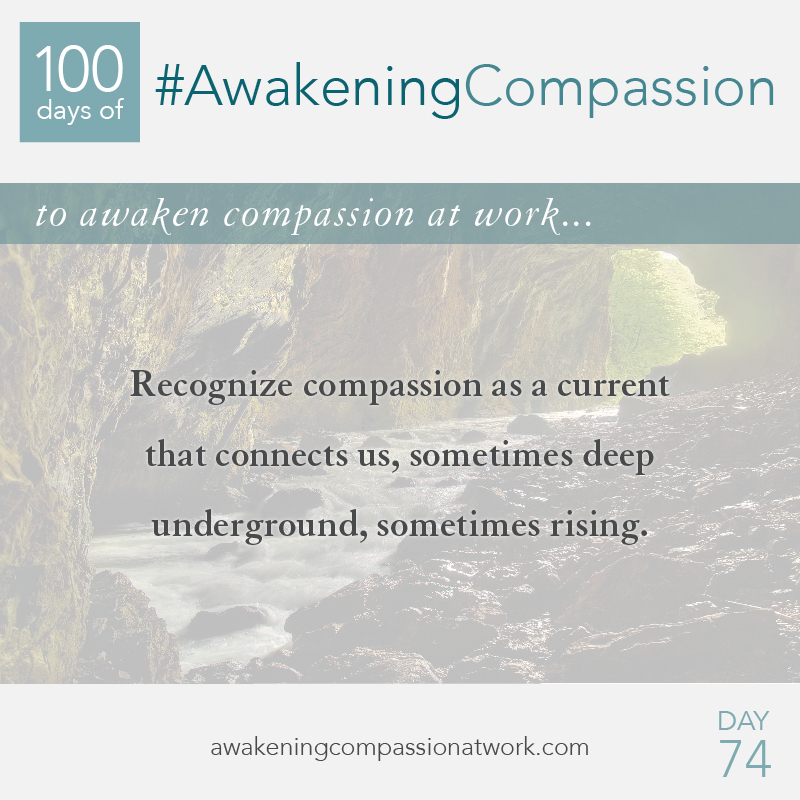 #AwakeningCompassion Day 74