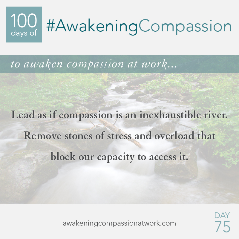 #AwakeningCompassion Day 75