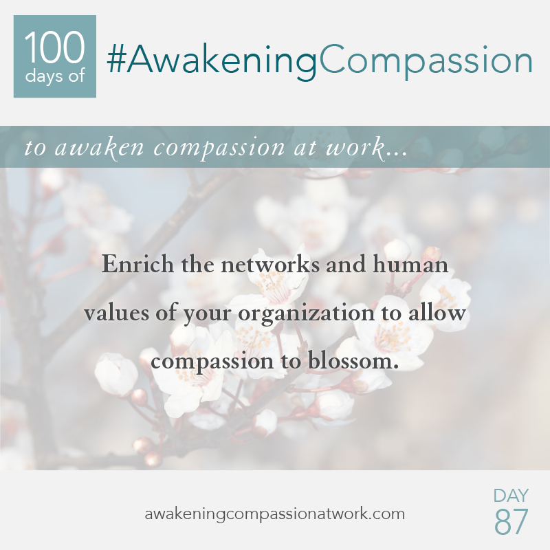 Enrich the networks and human values of your organization to allow compassion to blossom.
