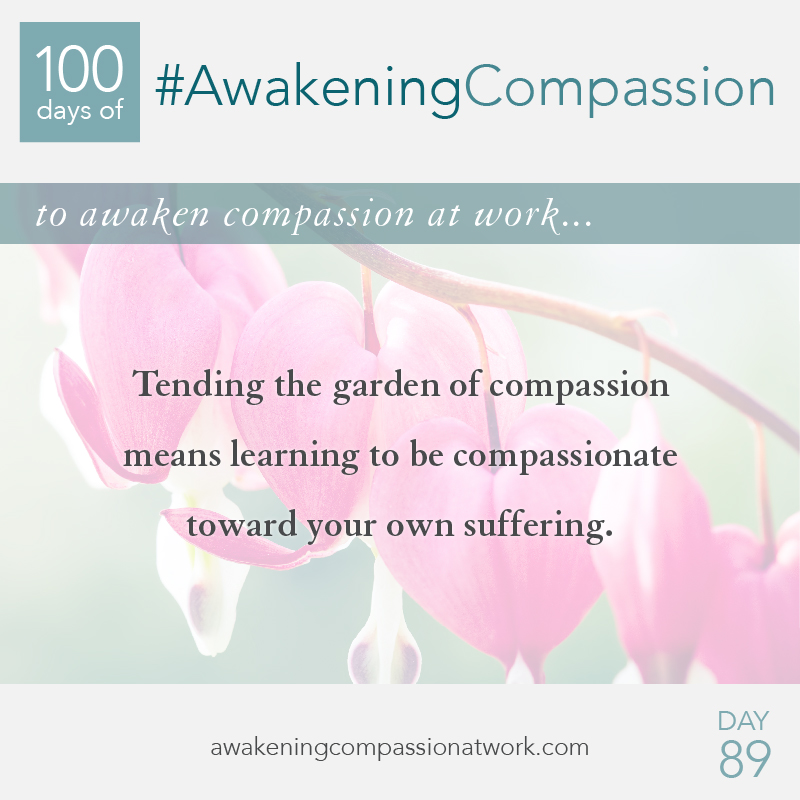 Tending the garden of compassion means learning to be compassionate toward your own suffering.