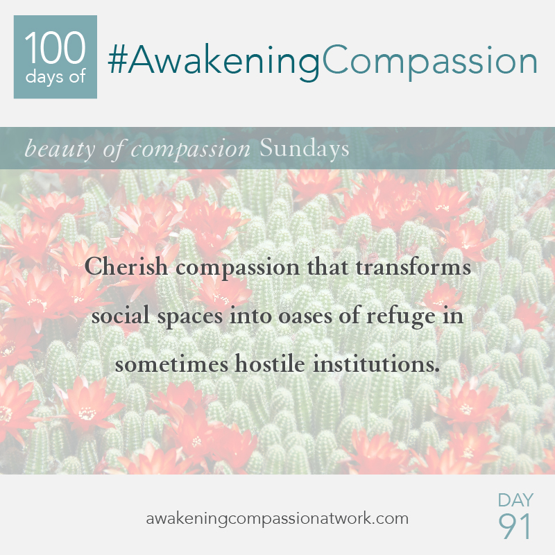 Cherish compassion that transforms social spaces into oases of refuge in sometimes hostile institutions.