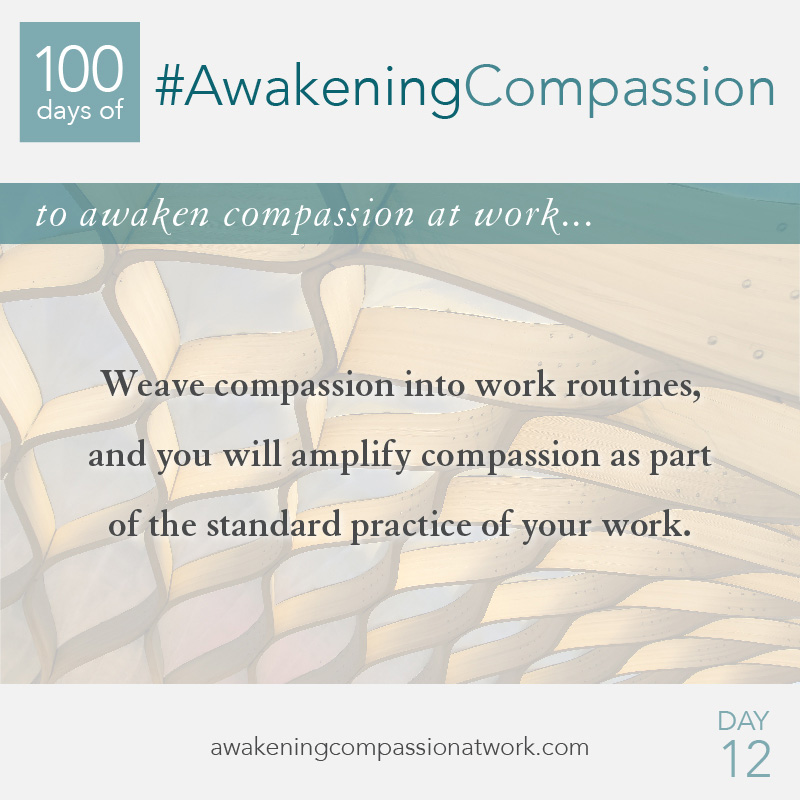 Weave compassion into work routines, and you will amplify compassion as part of the standard practice of your work.