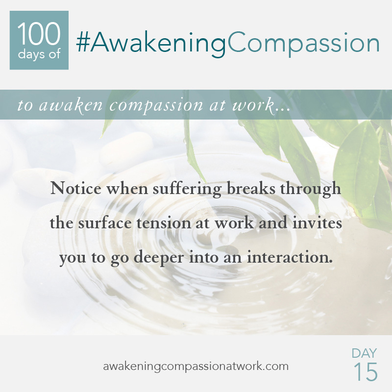 Notice when suffering breaks through the surface tension at work and invites you to go deeper into an interaction.
