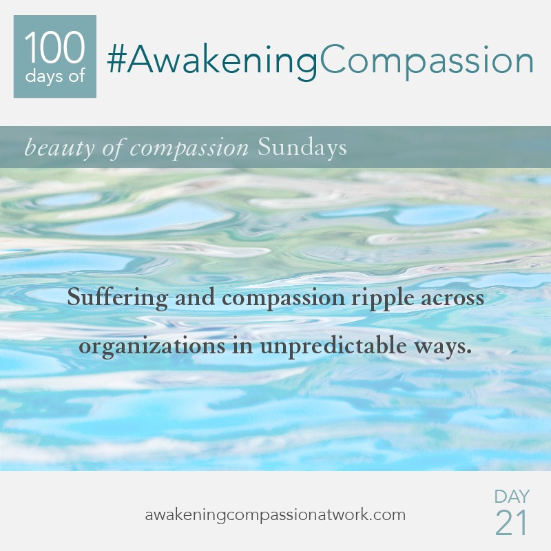 Suffering and compassion ripple across organizations in unpredictable ways.