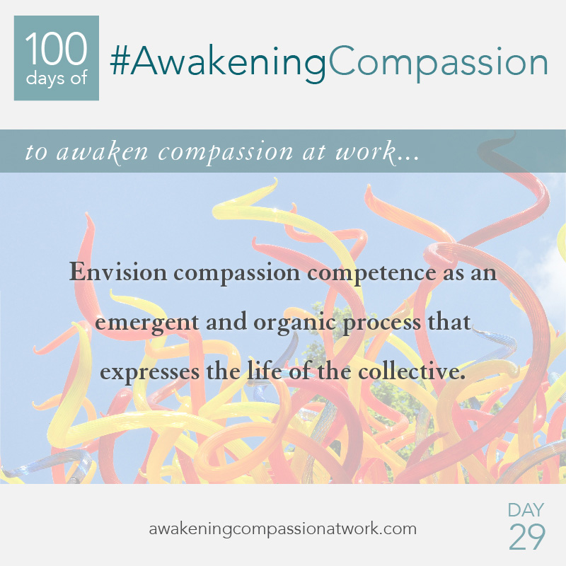 Envision compassion competence as an emergent and organic process that expresses the life of the collective.