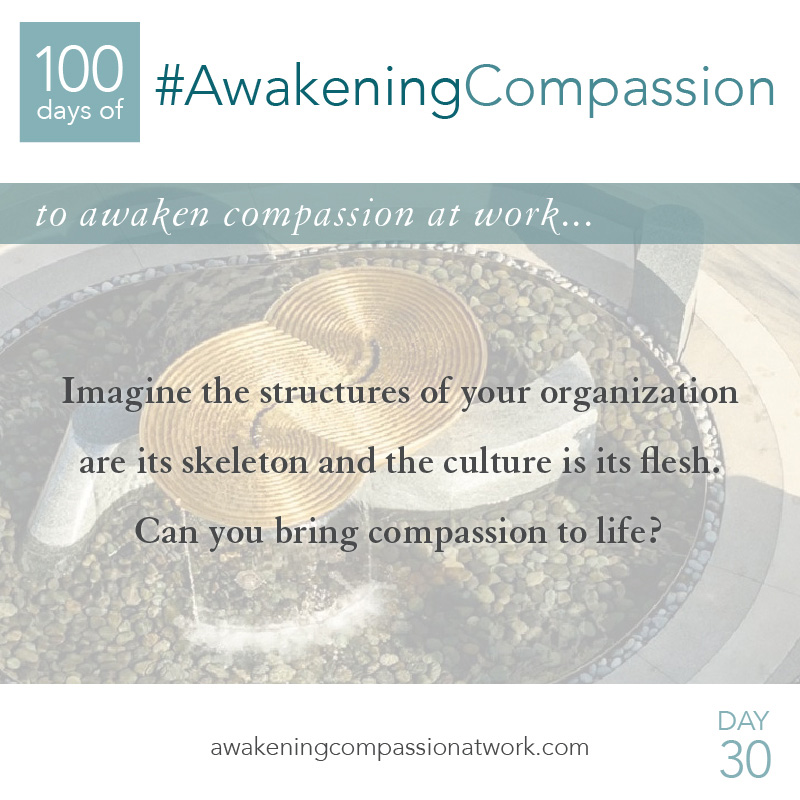 Imagine the structures of your organization are its skeleton and the culture is its flesh. Can you bring compassion to life?