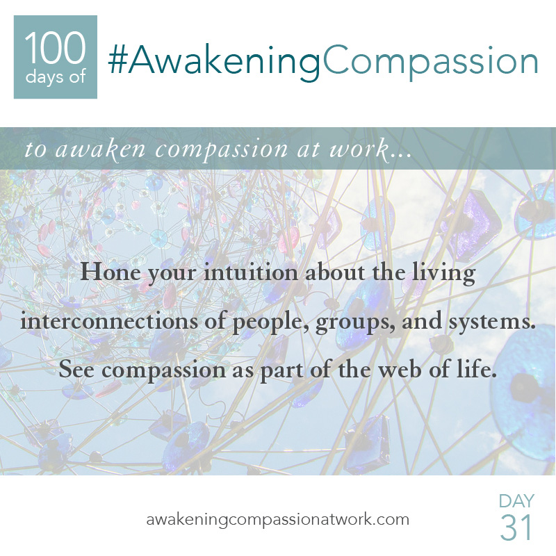 Hone your intuition about the living interconnections of people, groups, and systems. See compassion as part of the web of life.