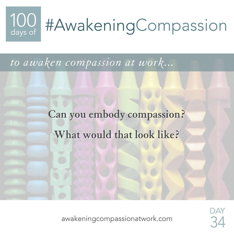 Can you embody compassion? What would that look like?