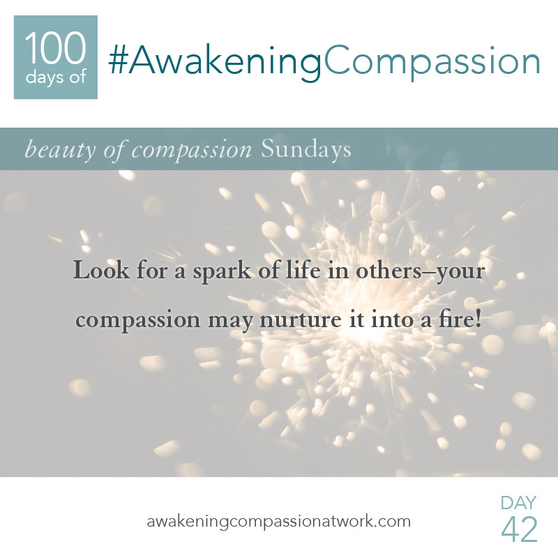 Look for a spark of life in others—your compassion may nurture it into a fire!