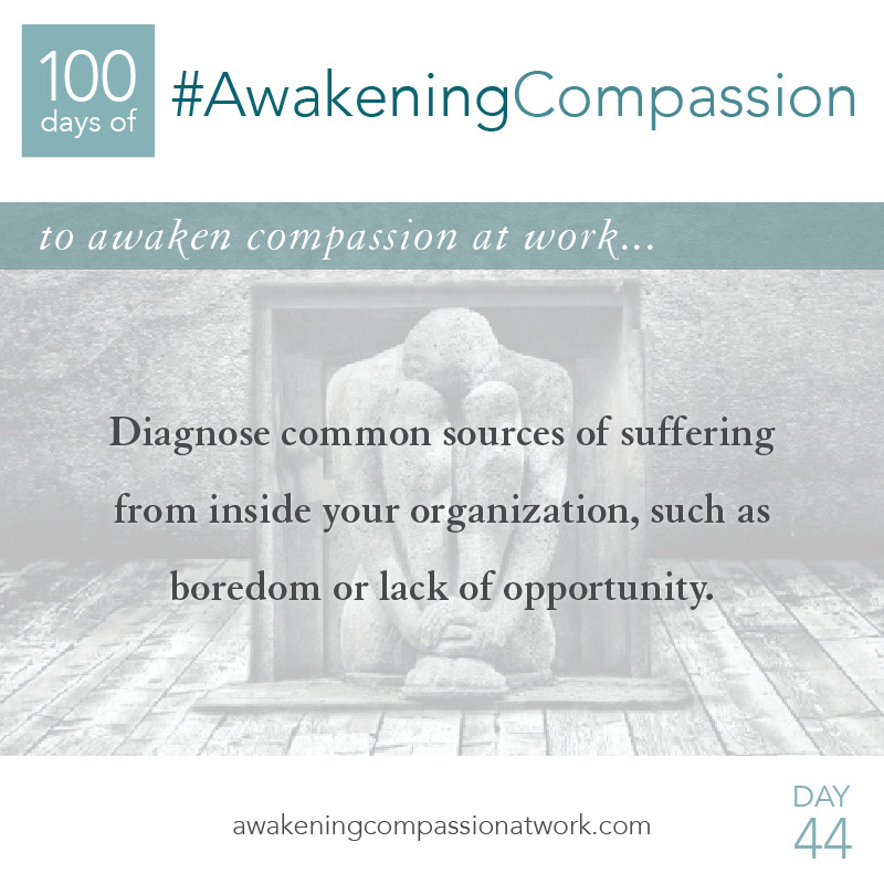 Diagnose common sources of suffering from inside your organization, such as boredom or lack of opportunity.