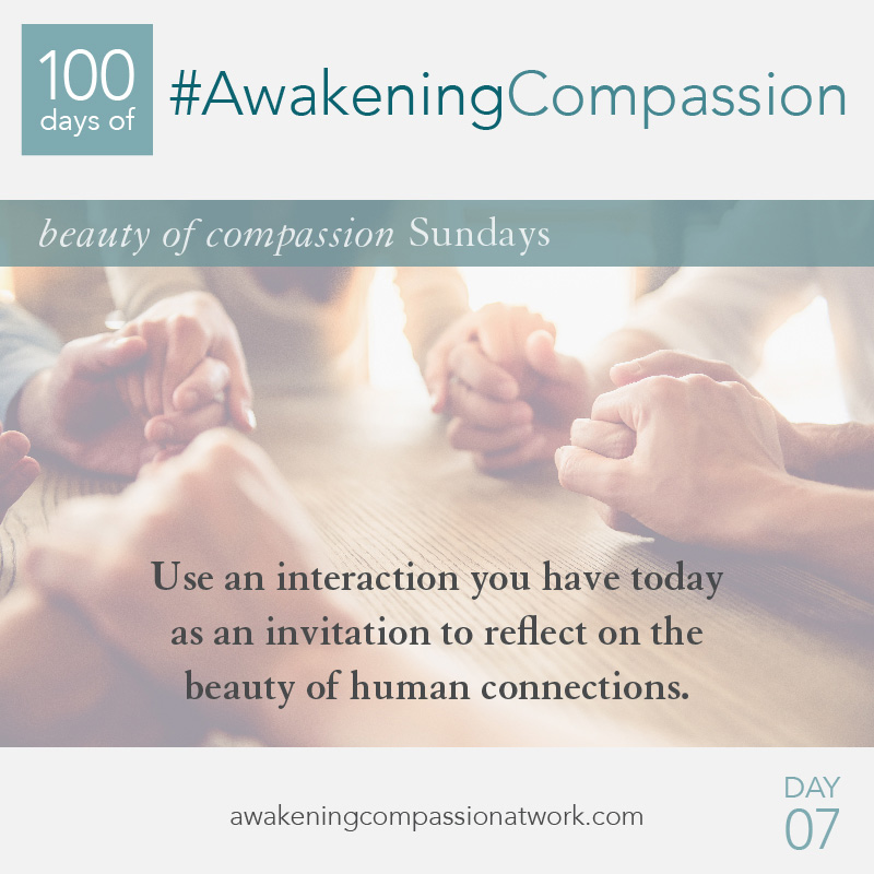 Use an interaction you have today as an invitation to reflect on the beauty of human connections.