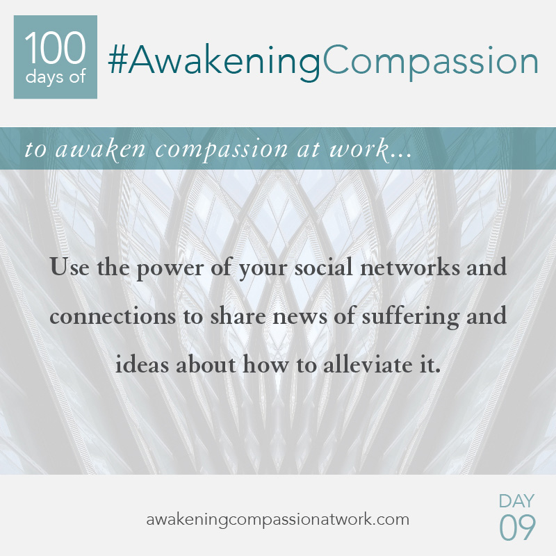 Use the power of your social networks and connections to share news of suffering and ideas about how to alleviate it.