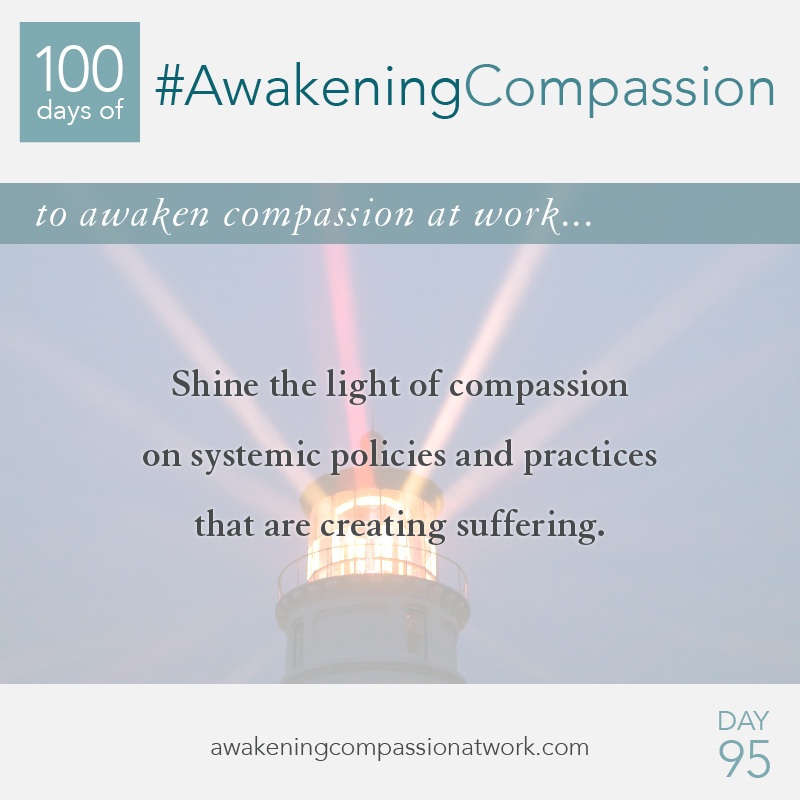 Shine the light of compassion on systemic policies and practices that are creating suffering.